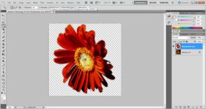 make transparent in photoshop